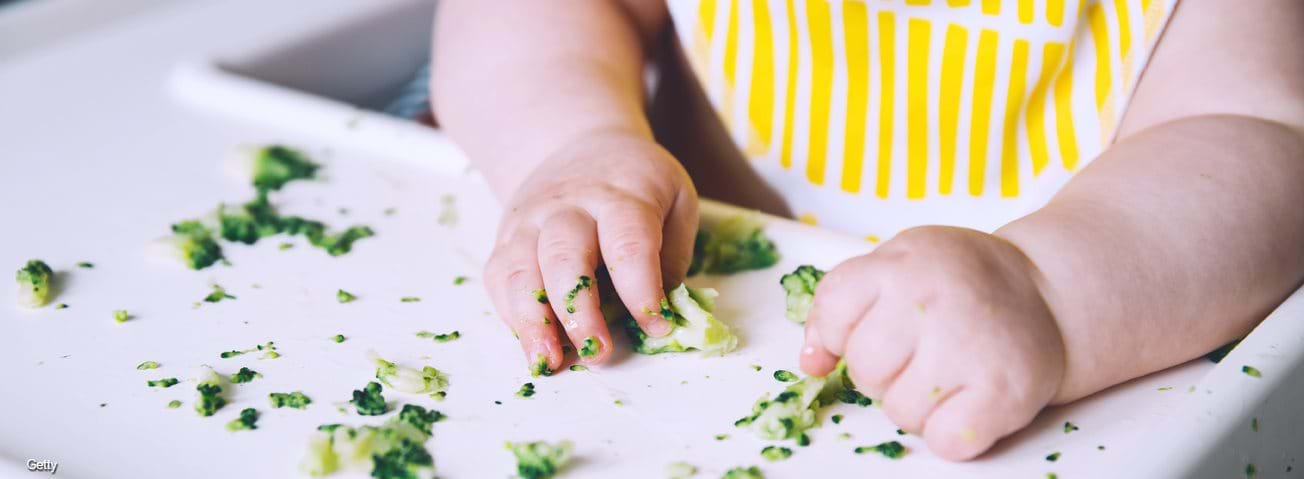 Infant in high chair eating chopped broccoli