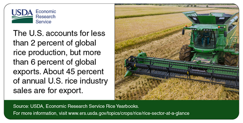 The U.S. account for less than 2 % of global rice production, but more than 6% of global exports. About 45% of annual U.S. rice industry sales are for export.