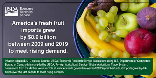 America's fresh fruit imports grew by $8.9 billion between 2009 and 2019 to meet rising demand.