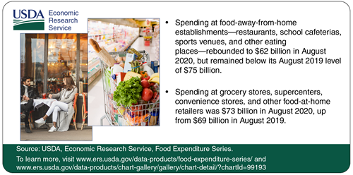 Spending at food-away-from-home establishments rebounded to $62 billion in August 2020, but remained below its August 2019 level of $75 billion. To the left of the infographic is an image of a couple sitting down in front of a café, and an image of a shopping cart filled with fruits and vegetables.