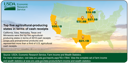 Top five ag-producing states in terms of cash receipts. California, Iowa, Nebraska, Texas and Minnesota are highlighted on the map
