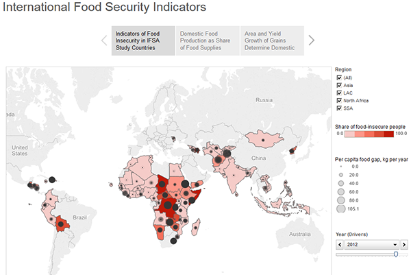 thumbnail International Food Security Indicators