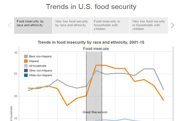thumbnail Trends in U.S. food security