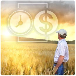 Farmer in field looking off into the distance. Infographic of time and money superimposed over sky.