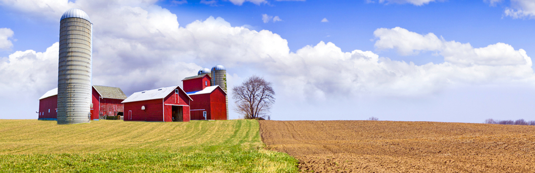 Barn, silo, and farm field scene