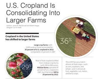 An infographic highlighting data on cropland in the United States.