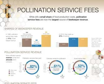 Infographic: Share of food production costs, pollination service fees are now the largest source of beekeeper revenue.