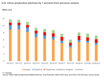 U. S. citrus production declines by 7 percent from previous season