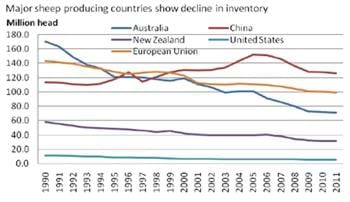 Major sheep producing countries show decline in inventory