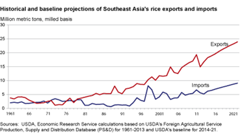 Southeast Asia's rice surplus projected to continue to expand