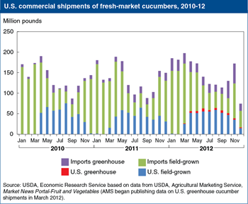 Mexico is the largest supplier of fresh cucumbers to the U.S. market