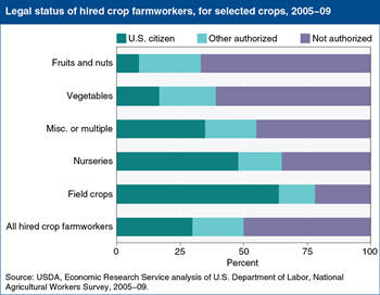 Hired farmworkers lacking authorization are particularly important for some crops