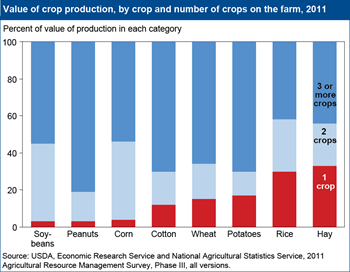 Relatively few farms produce just one crop