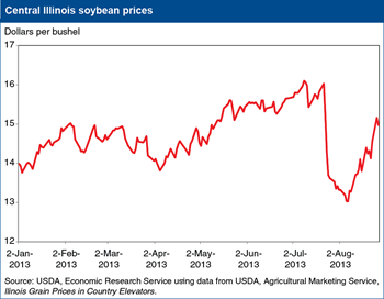 U.S. soybean prices drop then rebound on changing new-crop outlook