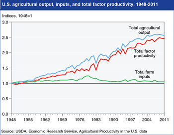 Growth in agricultural output has slowed since 2000