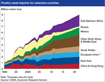 Strong projected growth in global poultry meat imports