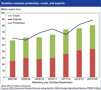 Global soybean market outlook turns toward Brazil's large impending crop