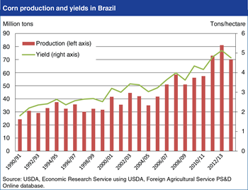 Yield growth supports rapid expansion of Brazilian corn production