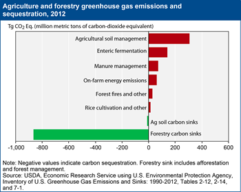 Agriculture's role in climate change: greenhouse gas emissions and carbon sequestration