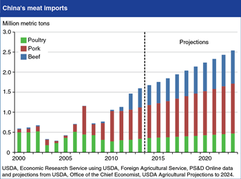 Continued growth projected in China's meat imports
