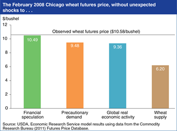 Wheat price volatility largely due to supply and demand shocks