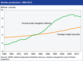 U.S. broiler production has leveled off after decades of rapid growth