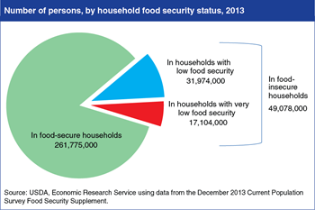 In 2013, 49.1 million Americans lived in food-insecure households