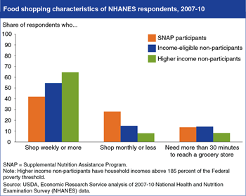 Grocery shopping patterns vary by income and SNAP participation