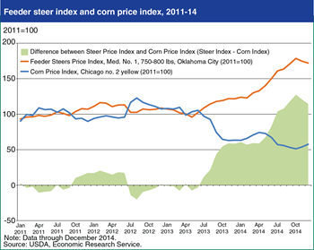 Cattle producer returns bolstered by higher cattle prices and lower feed costs