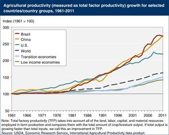 Productivity rises in global agriculture