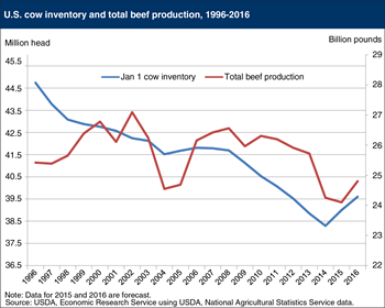 U.S. beef production is historically low, but expected to increase in 2016