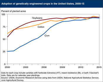 Genetically engineered seeds planted on over 90 percent of U.S. corn, cotton, and soybean acres in 2015
