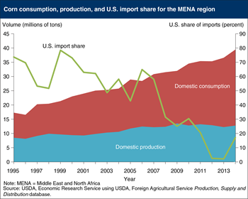 Corn use by the Middle East and North Africa region is growing, but U.S. import share is declining