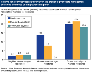 Corn and soybean returns are highest when growers and their neighbors manage glyphosate resistance