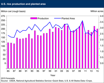 U.S. rice production is projected to decline 6 percent in 2015