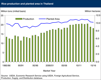 Thailand's rice production at lowest level since 2004/05