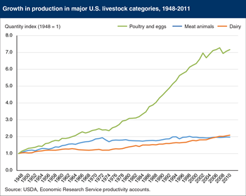 U.S. poultry and eggs output has grown more rapidly than dairy and meat animals