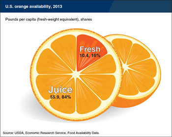 Over 80 percent of U.S. oranges available for domestic consumption are used in juice