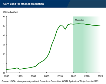 After a decade of rapid growth, corn use for ethanol is projected to decline