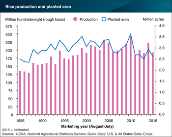 U.S. rice production declined 13 percent in 2015
