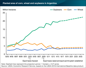 Soybeans dominate expansion of cropland in Argentina