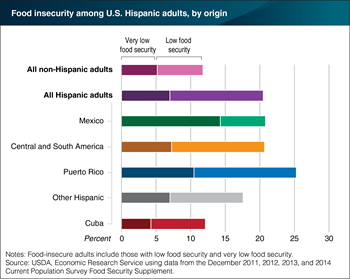 Among U.S. Hispanic adults, those with Puerto Rican origins have highest food insecurity rates
