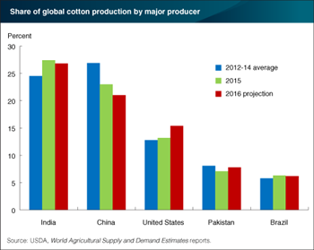 U.S. cotton production and share of global supply are expected to be up in 2016