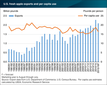 Growth in U.S. fresh apple exports reflects changes in supply and demand