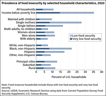 Food insecurity rates are highest for single mother households and households with incomes below poverty line
