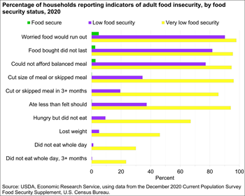 Percentage of households reporting indicators of adult food insecurity, by food security status, 2019