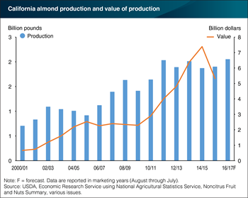 California almond production forecast to reach record levels