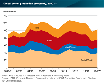 Global cotton production projected to rebound from 13-year low
