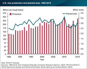 U.S. 2016/17 rice crop projected at a near-record 237.1 million cwt