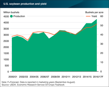 Record yields driving soybean production gains